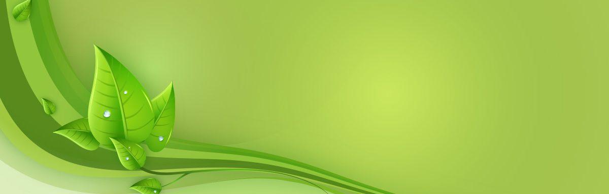 süt-hormonuna-karşı-faydalı-gelen-bitkiler